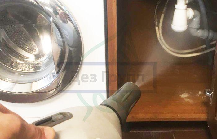 Как избавиться от дрозофил в квартире