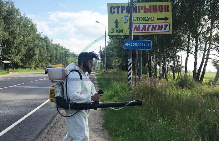 Борщевик в Москве