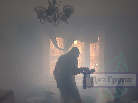 Горячий туман от тараканов отзывы
