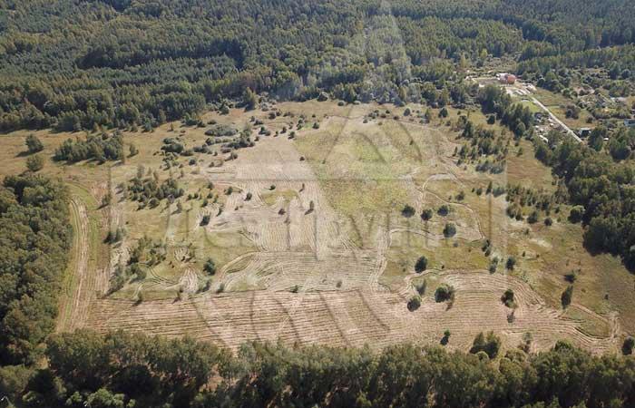 Обработка земельного участка от клещей