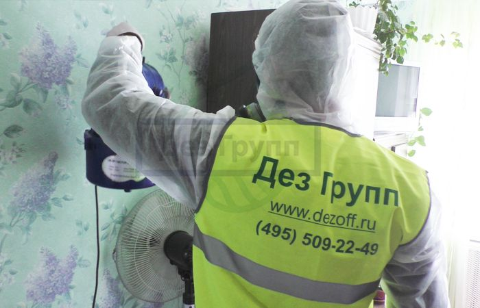 Служба по уничтожению тараканов