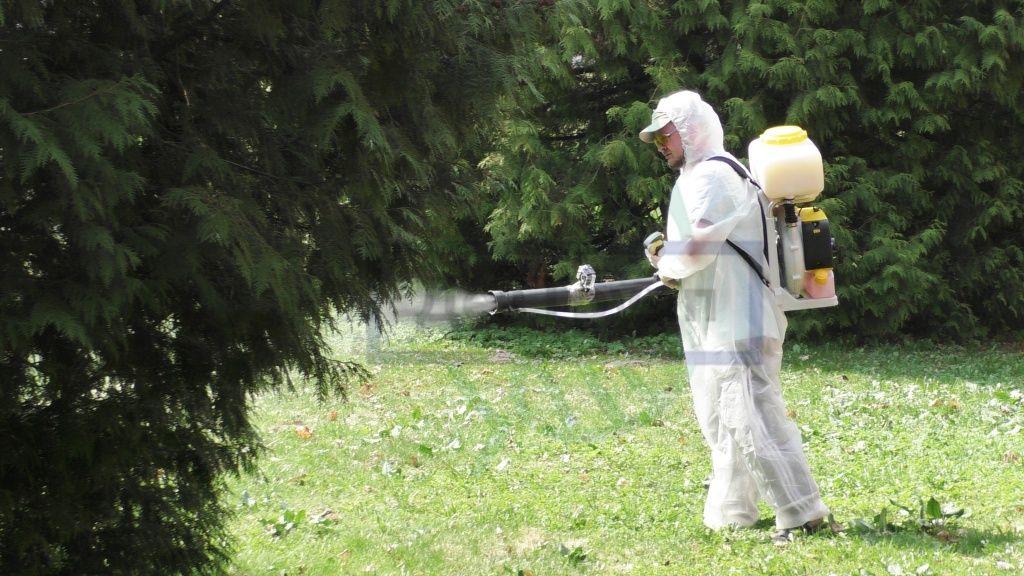 Обработка участка от насекомых
