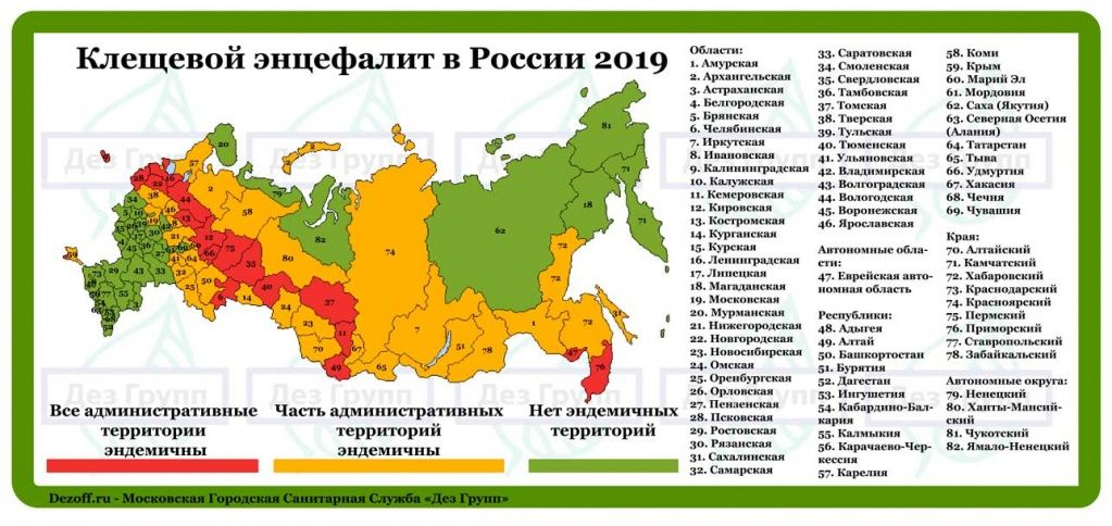 https://dezoff.ru/upload/medialibrary/444/Kleshchevoy_entsefalit_Rossii_2019.jpg