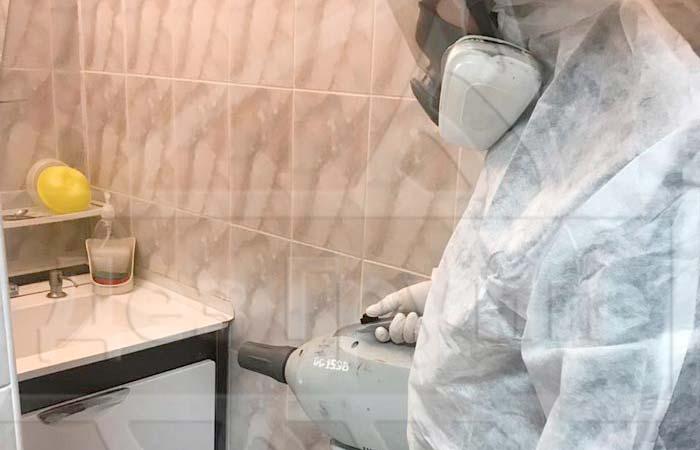 Белые насекомые в ванной: как от них избавиться, к кому обращаться